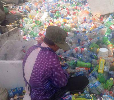 collecting waste plastic bottles