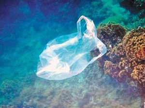 soft-plastic-bags-in-the-ocean